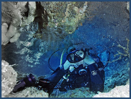 Scuba Diving in The Caribbean by Pixabay